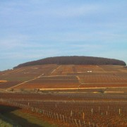 The hill of Corton