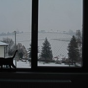 The view from Chat Sauvage's new winery