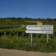 Road sign with Chevalier-Montrachet in background