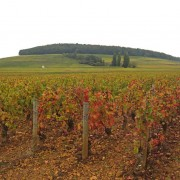 Hill-of-Corton-02