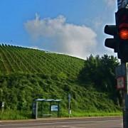deutschherrenhof-11