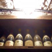 caroline lestime gagnard 04