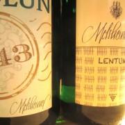 melsheimer molun&lentum